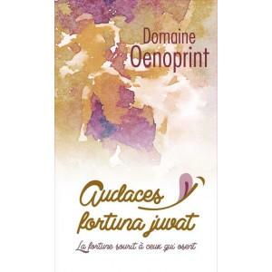 Audaces Fortuna Juvat